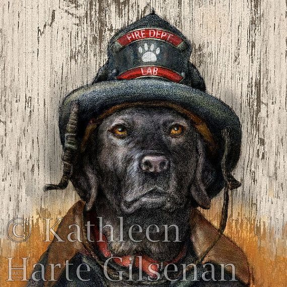 "Black Lab Art  Firefighter  16x16 Framed Print by MaddieLabStudio, $95.00 ""Honoring all the brave firefighters and arson detection Labs who work to keep us safe."""