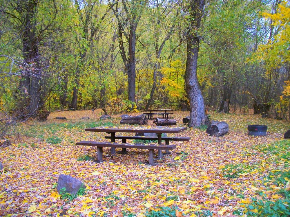 This is a picture of a beautiful campground called Guinevere they close it for the winter after Labor day I had the place to myself --what a treat pure leaf 11/3/15