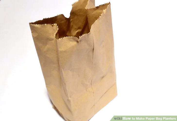How to Make Paper Bag Planters | How to make paper, Paper