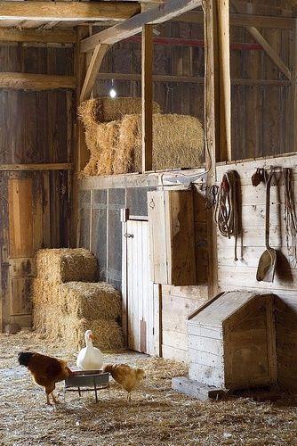 Barn inside   Country barns, Farms living, Country farm