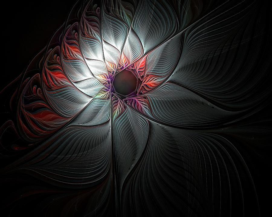 Star Flower by Amanda Moore