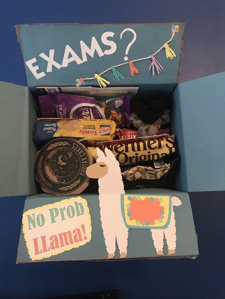 Gift box for the college studentexams no prob llama in