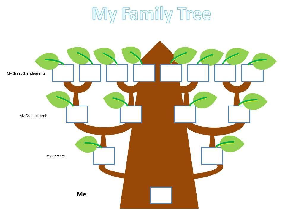 school kids family tree project