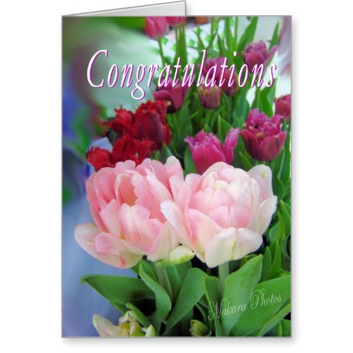 Deals congratulations customize greeting card so please read the deals congratulations customize greeting card so please read the important details before your purchasing anyway birthday cards onlinebirthday m4hsunfo