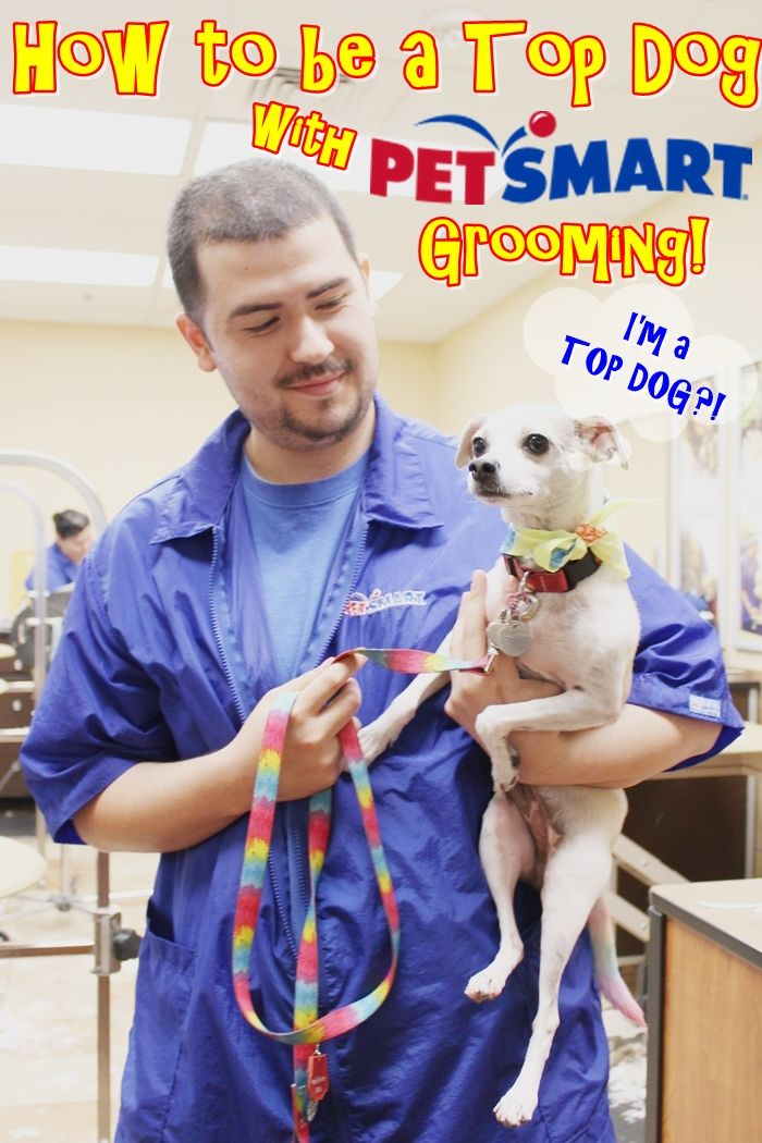 How To Be A Top Dog With Petsmart Grooming Petsmartcorp Grooming Review Ad Petsmartgrooming Petsmart Grooming Petsmart Dog Friends