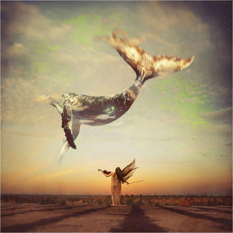 ballena en el cielo