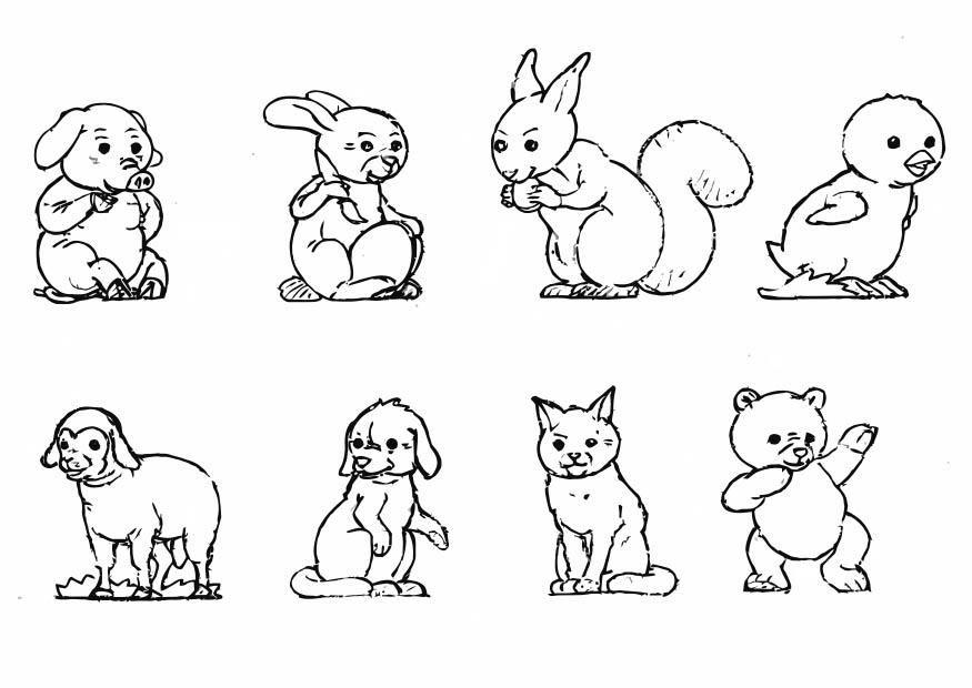 Ausmalbilder Haustiere   Google Trends   animal coloring   Pinterest ...