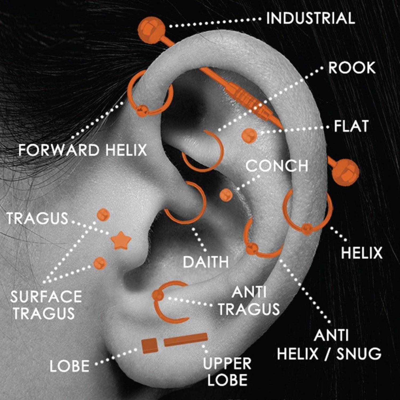 Piercing through bridge of nose  Bodyjyou G Steel Captive Bead Piercing Ring Kit Hoop for Nose Lip