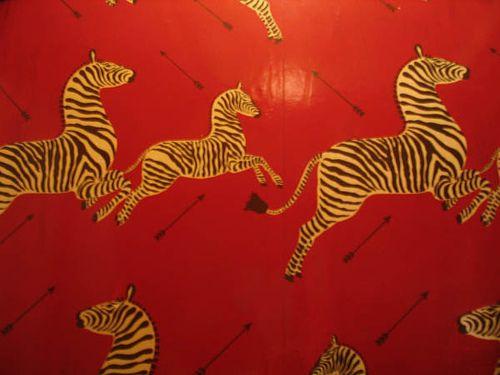 The Royal Tenenbaums Zebra Wallpaper