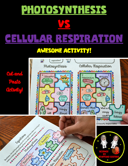 Photosynthesis vs Cellular Respiration Photosynthesis