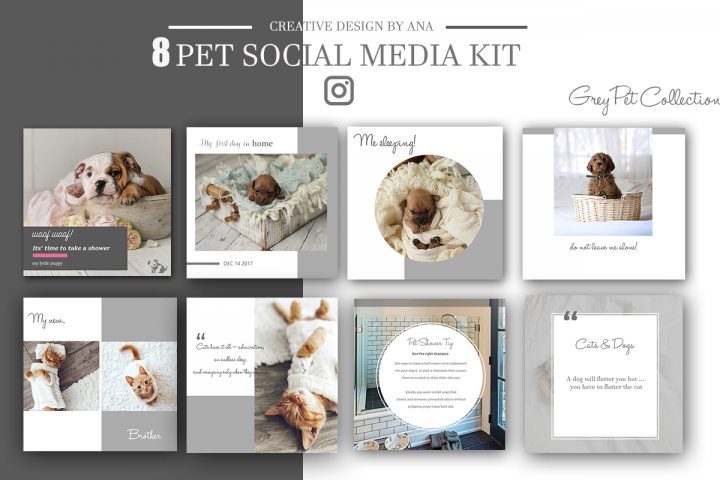 Pet Social Media Kit Template Social Media Post Pack 8 Set Templates Bundle For Instagram Pinterest Blog Facebook Marketing Branding Kit Media Kit Media Kit Template Instagram Design