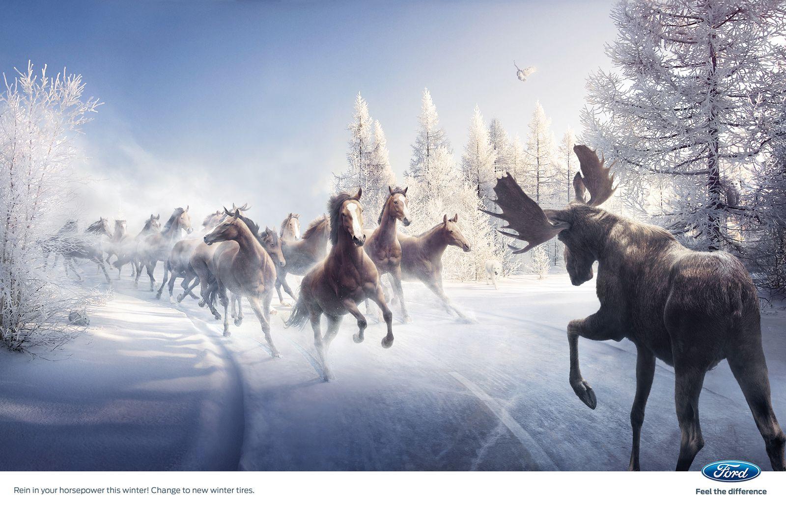 Wonderful Wallpaper Horse Creative - fc85ee0de1134c598657f93342a6d068  HD_913081.jpg