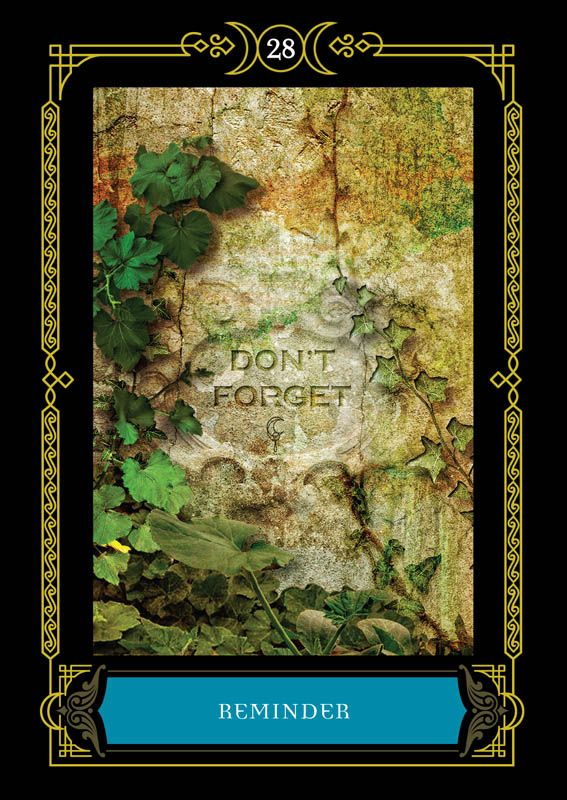 Reminder Colette Baron Reid Oracle Cards Founder Of Oracle School House Of Night Oracle Cards Angel Oracle Cards