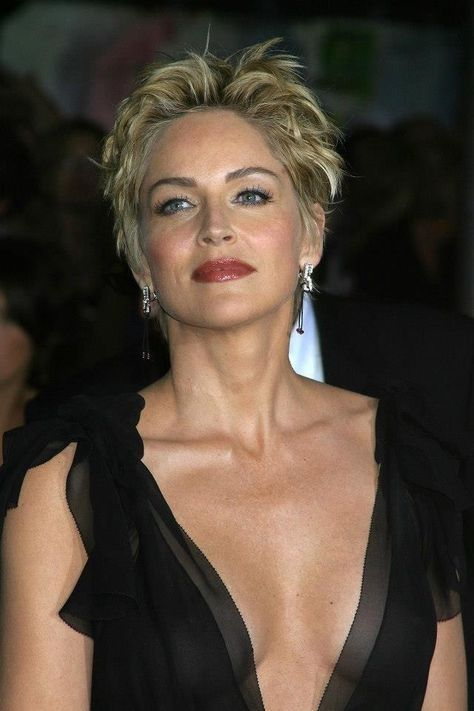Sharon Stone (avec images) | Cheveux courts, Cheveux, Coiffures cheveux courts