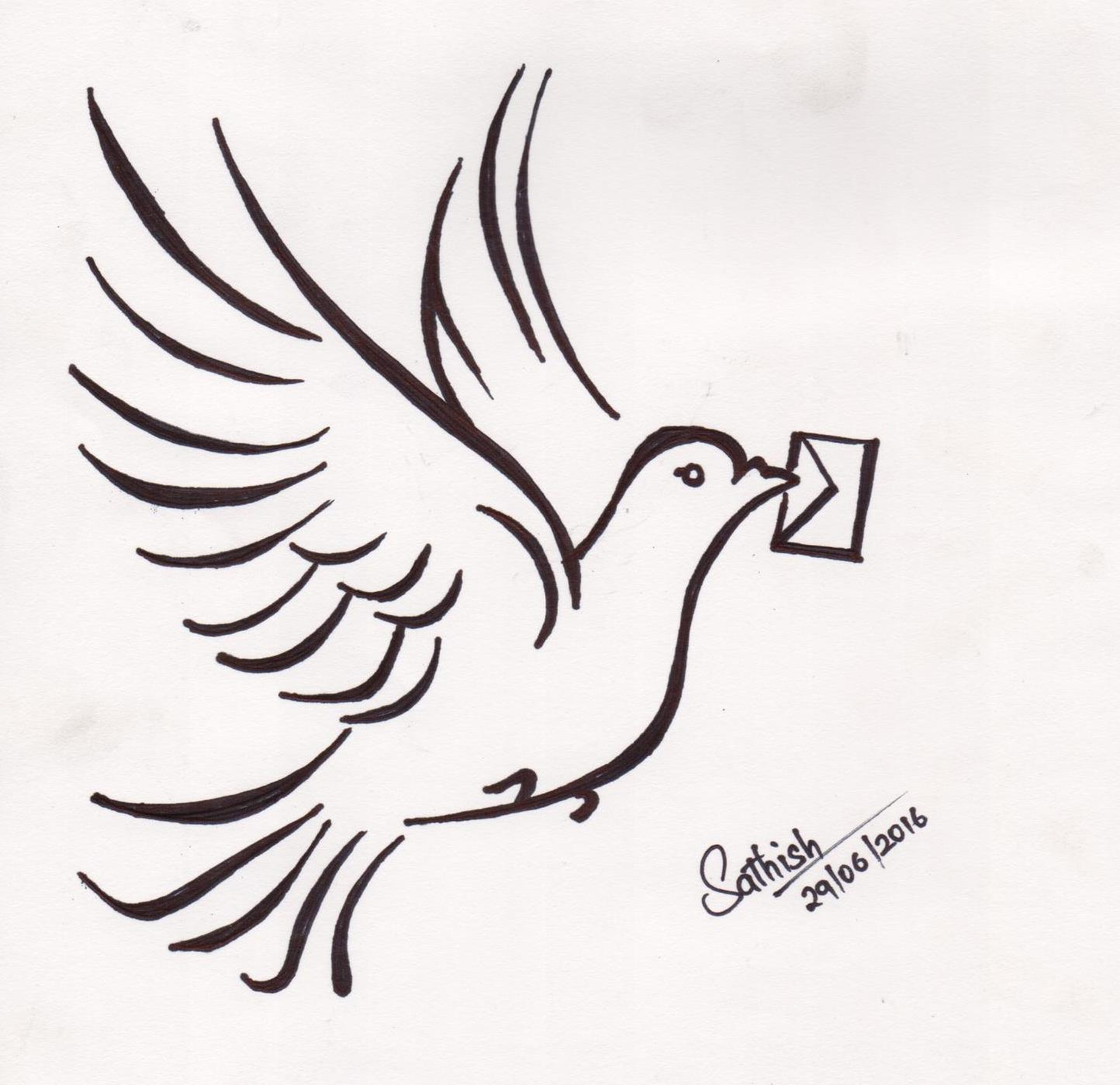 Pigeon Art Sathishlive Art Sketch Instapic Drawing Picture