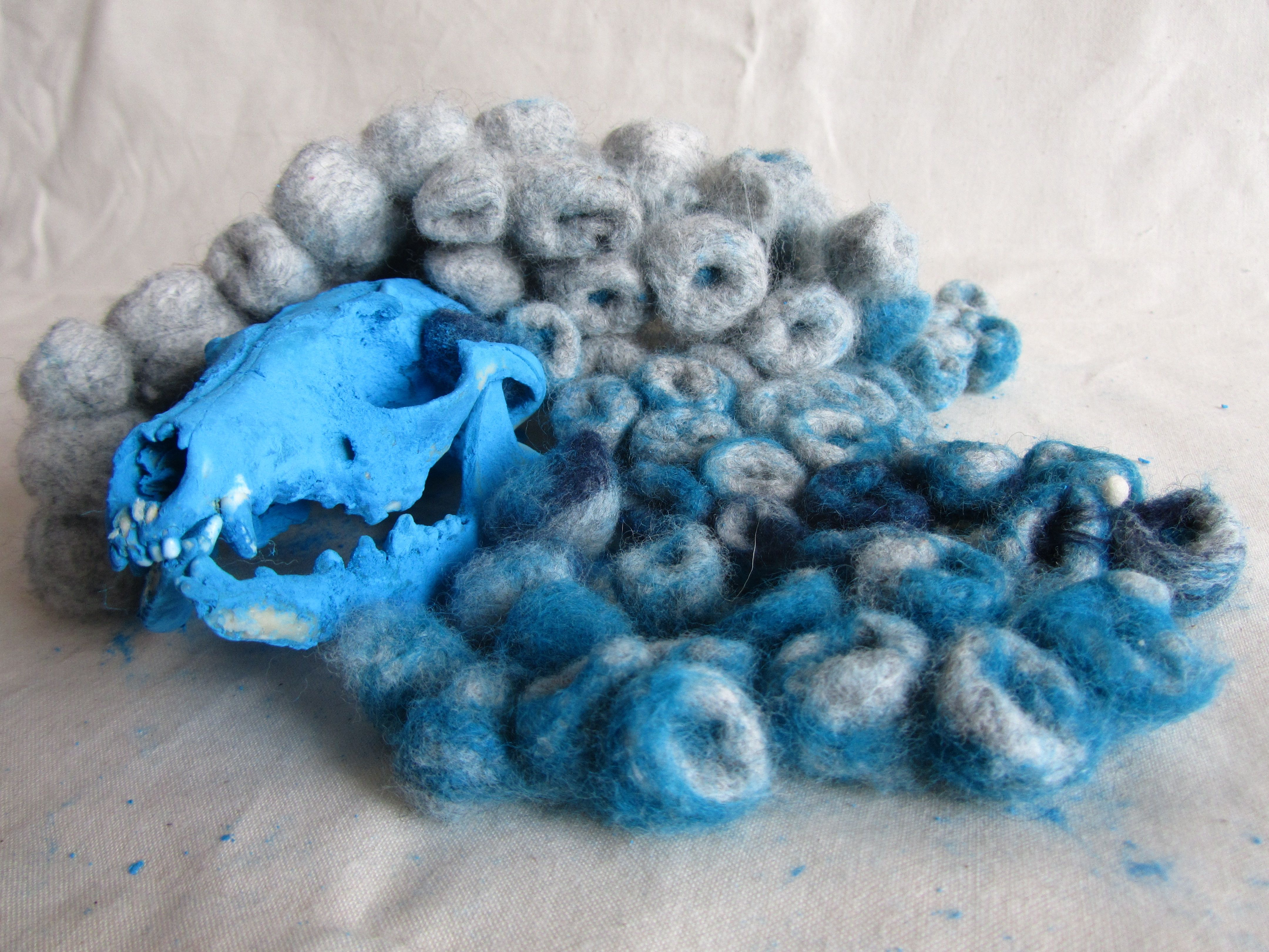 not a very good picture ,i know, but i call this blue fox couse well it's blue and the skull of a fox