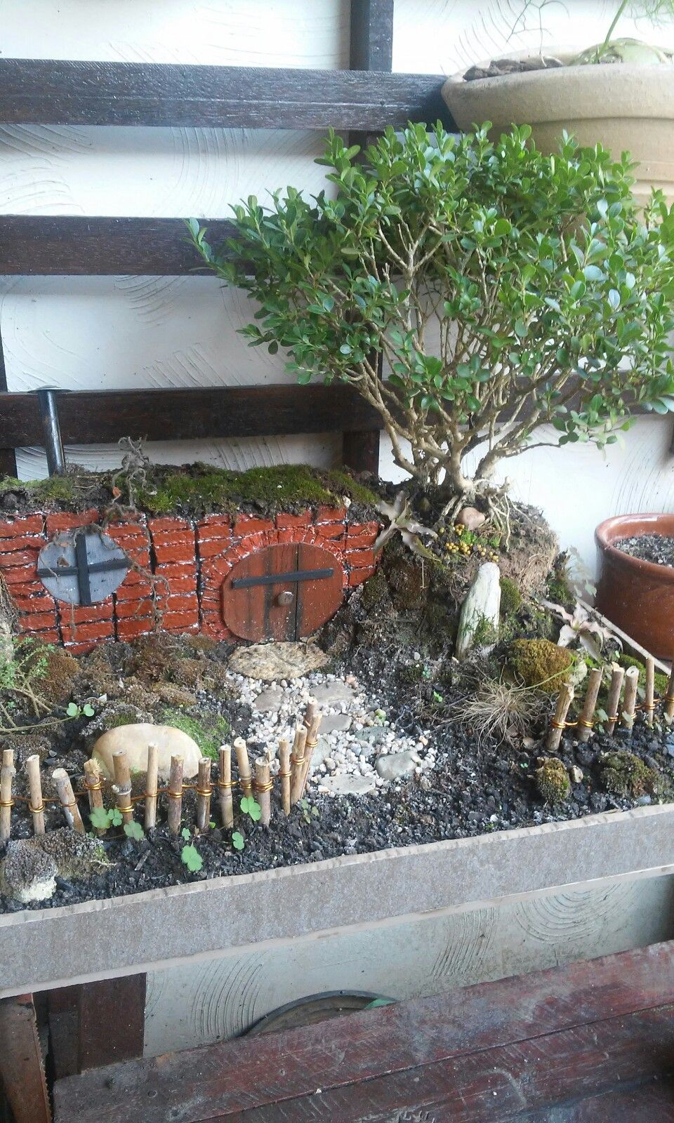 Tiny Hobbit Home Carved In Bonsai Trees. Bag End Bonsai Trayscape A Baggins Hobbit  Home Design You Gallery