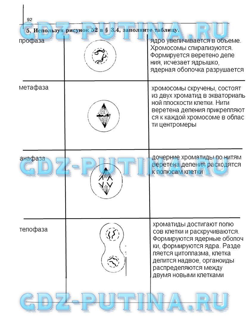 Блок самоконтроля и взаимного контроля тема 3 стр 87 ответы 10 класс