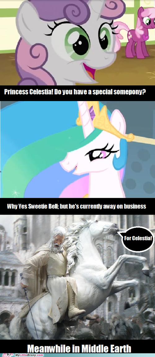 my little pony, friendship is magic, brony - Celestia's Special Somepony  Awkward...