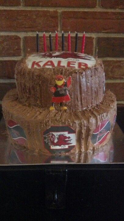 Gamecock Cake Adorlocher Childrens Birthday Cakes And Cupcakes