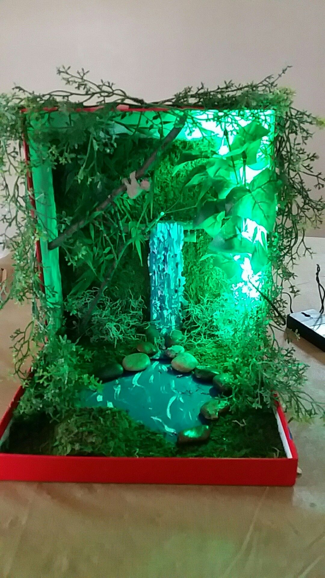 Diorama Amazon Rainforest In A Shoebox