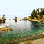 Best beachcombing: Olympic National Park, WA    The easy hike to Shi Shi Beach is best made at low tide, when you encounter some of the best tidepools on Earth against the backdrop of towering sea stacks, Pacific waves, and the occasional kayaker.