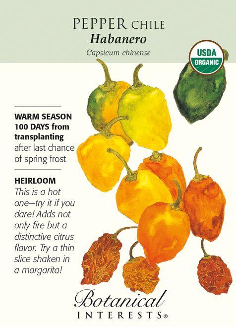 Habanero Chile Pepper 30 Seeds Organic Horta