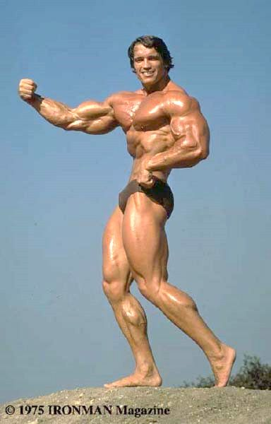 Arnold swarchenegger porn