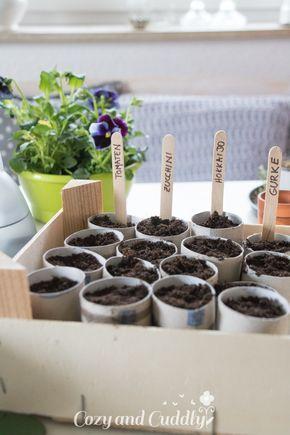 Anzucht-Töpfchen aus Klopapierrollen - Aussaat-Tipps - Wir starten ins neue Gartenjahr #kräutergartendesign