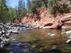 Oak Creek just below Manzanita Campground
