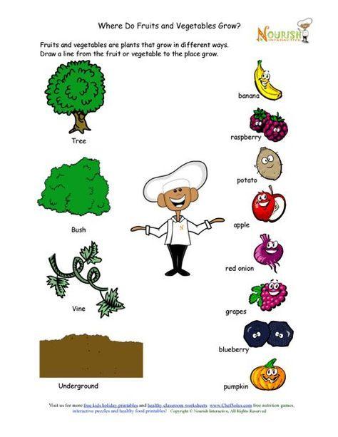 where do fruits and vegetables grow matching worksheet nutrition education pinterest. Black Bedroom Furniture Sets. Home Design Ideas