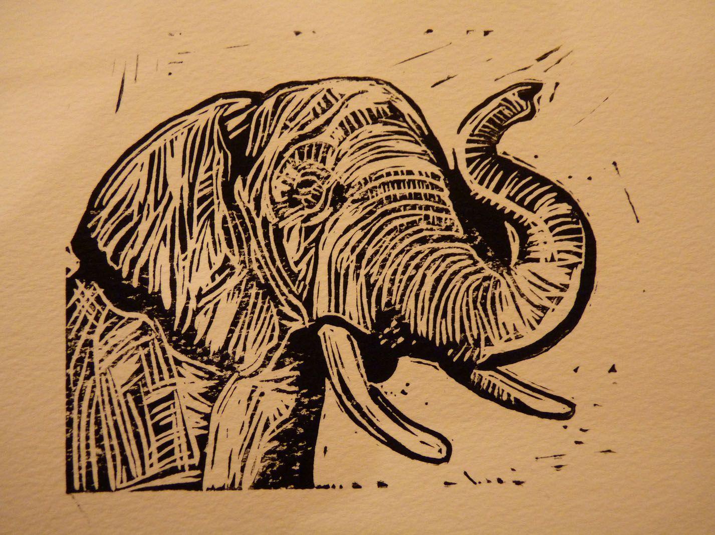 Elephant linocut by ieuan edwards http ieuanedwards