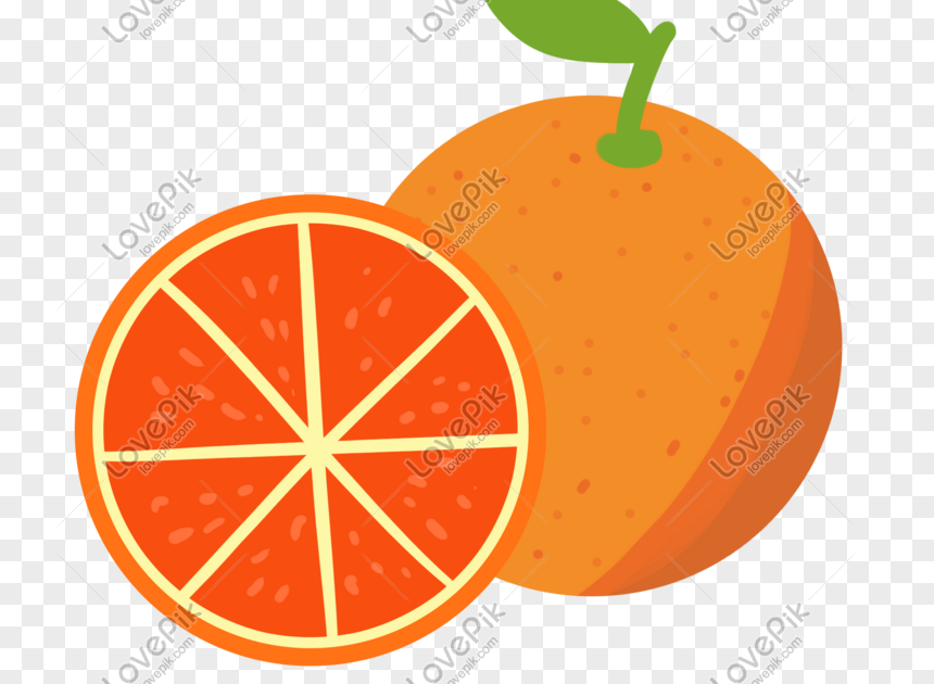 Fantastis 30 Gambar Kartun Buah Melon Kartun Buah Melon Buah Oren Kuning Gambar Unduh Gratis Imej Download Elemen Buah Melon Melon Gambar Buah Gambar Kartun