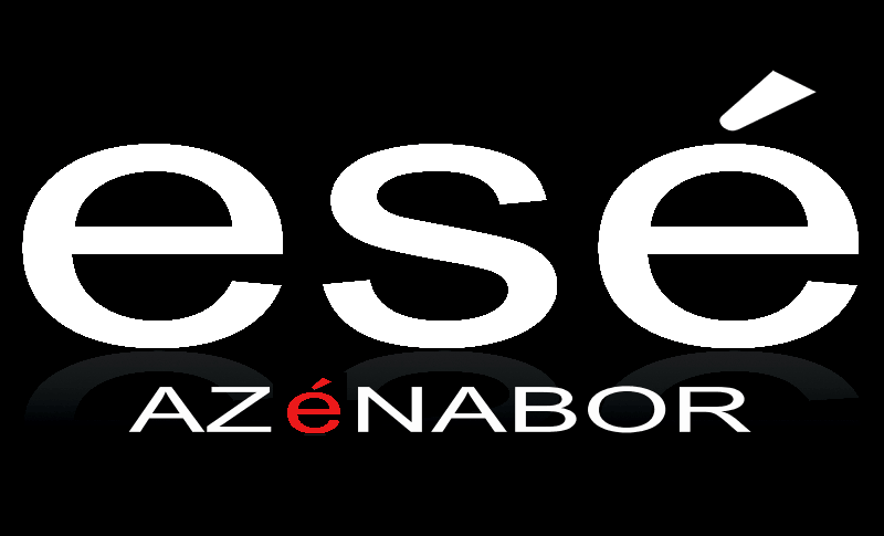 www.EseAzenabor.com