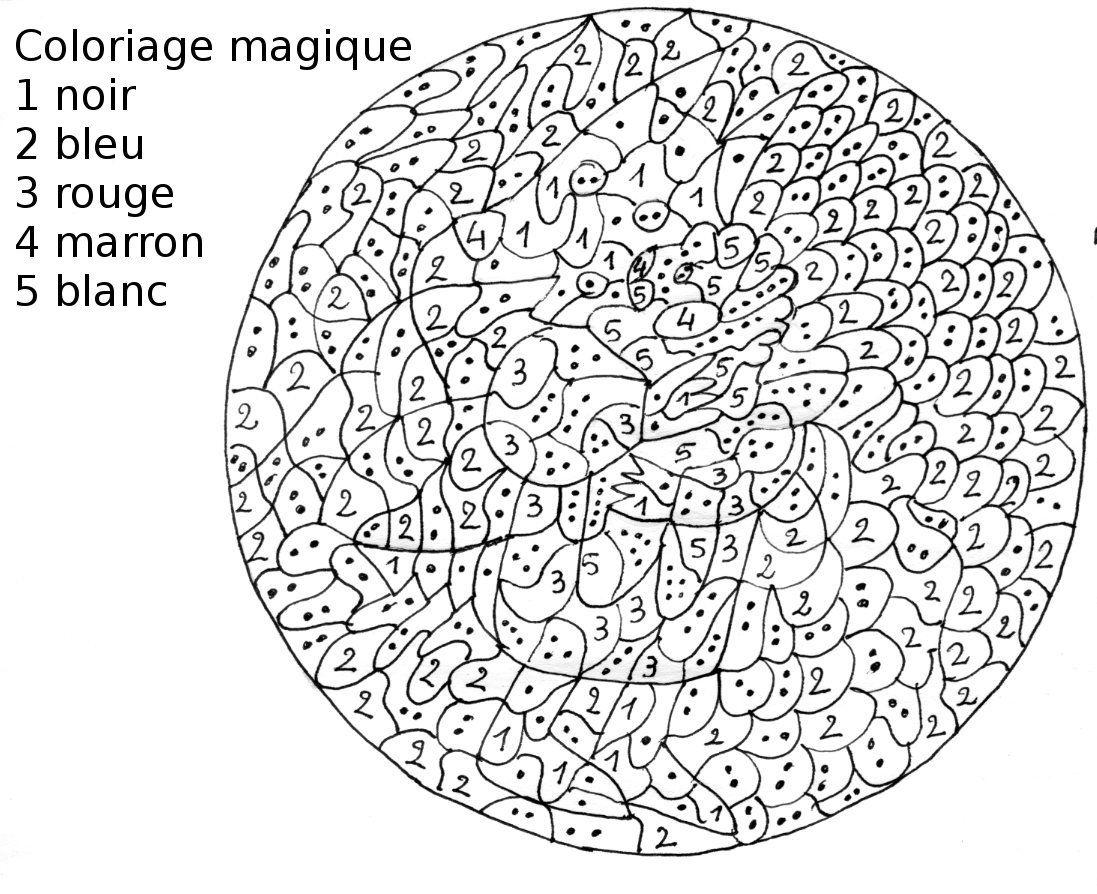 Coloriage Magique Difficile à colorier - Dessin à imprimer in 19