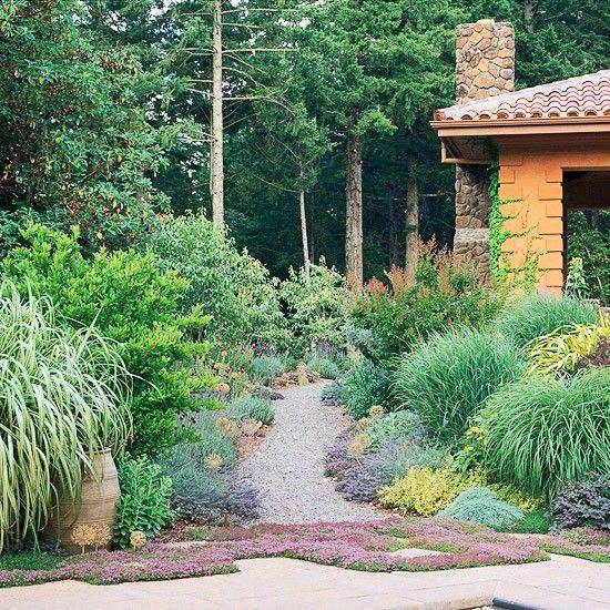 ornamental grasses border garden