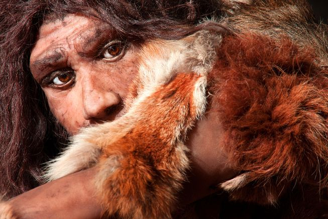 7 surprising facts about Neanderthals