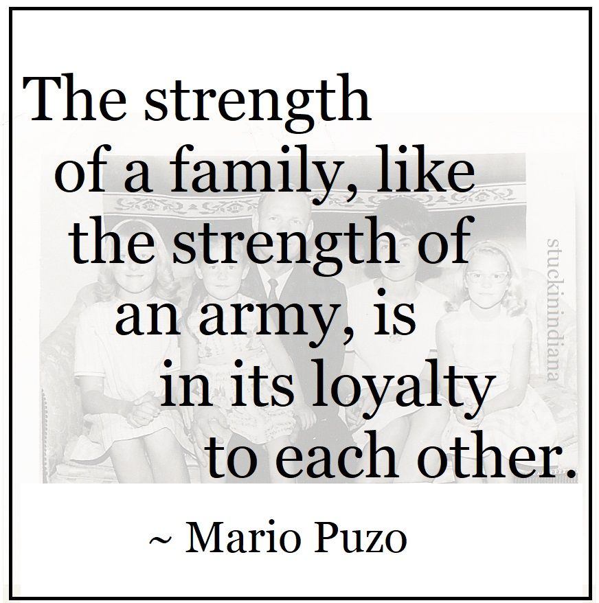"""The strength of a family, like the strength of an army"