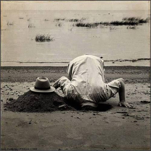 Head in the sand.  Guto Rodrigues