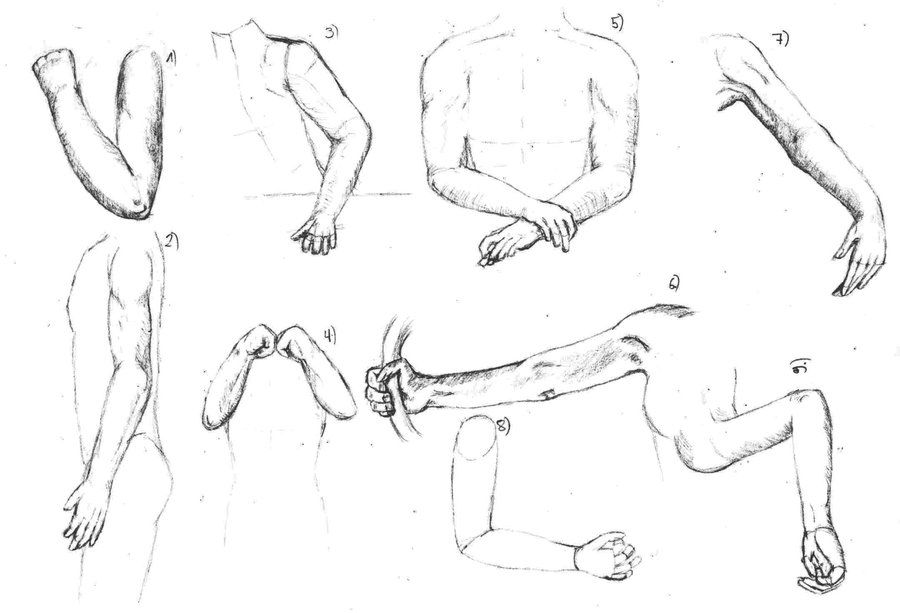 Anime body diagram car wiring diagrams explained another anime body diagram art pinterest body diagram rh pinterest com human body diagram of legs ccuart Choice Image