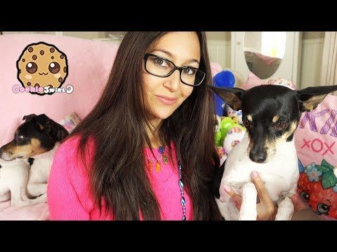 vlog with dogs cookie swirl c random video fan mail from lol surprise party vlog with dogs. Black Bedroom Furniture Sets. Home Design Ideas