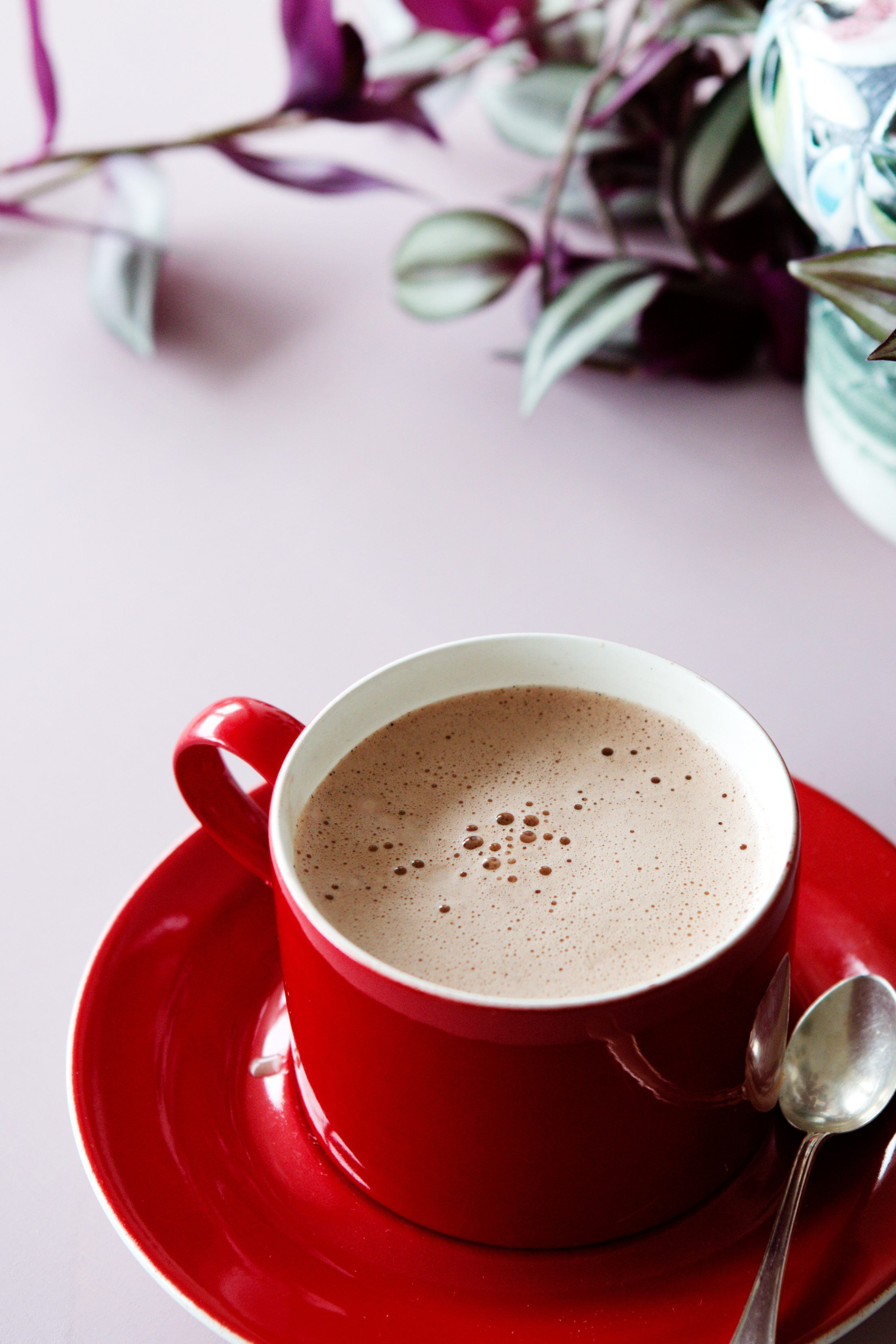 This hot chocolate drink is perfect for the colder months when you need something creamy and delicious to keep you warm.