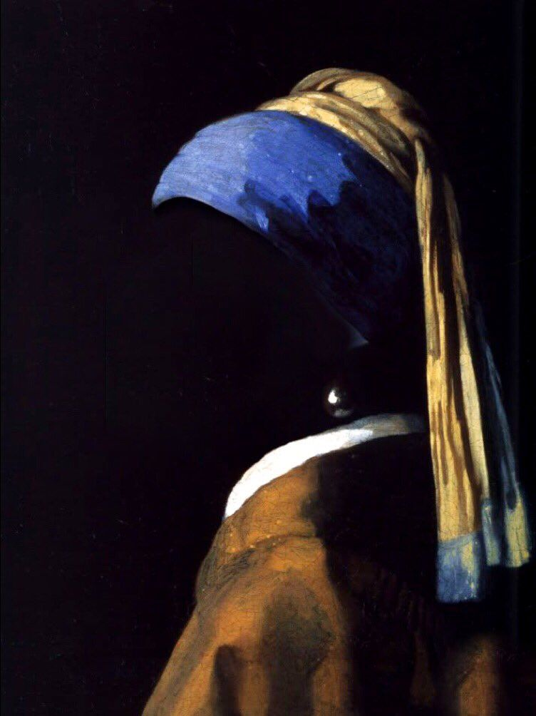 The Girl With A Pearl Earring Johannes Vermeer Girl With Pearl