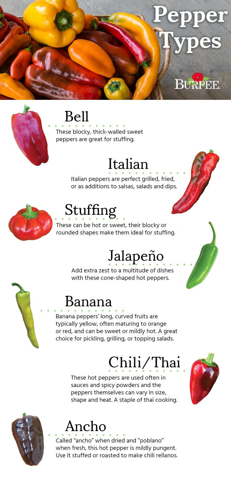 Pepper Types Find The Perfect Pepper Type For Your Garden And Palate Only At Www Burpee Com Stuffed Peppers Stuffed Sweet Peppers Types Of Peppers