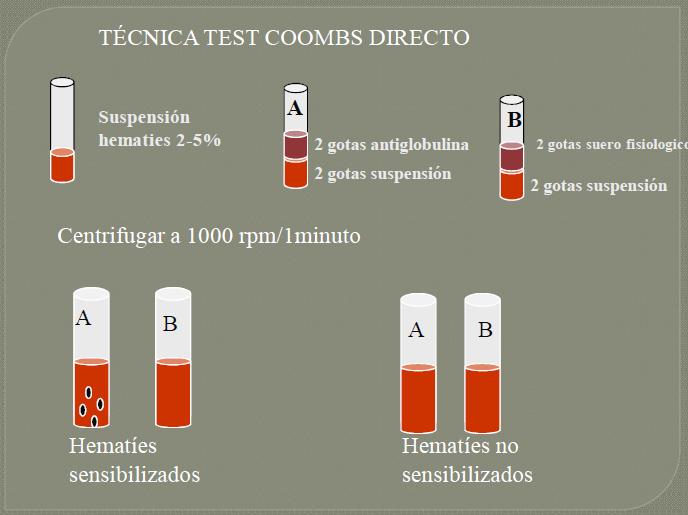 Test de coombs directo