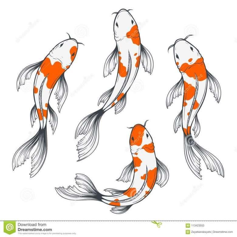 12 Japanese Koi Fish Drawings Drawingwow Com In 2020 Koi Fish Drawing Fish Sketch Fish Drawings