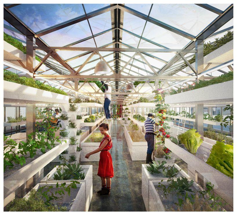Generic Architecture As Strategic Design For Rooftop Urban Agriculture Aquaponic Farm In Basel For Urban Farmers Antonio Scarponi Conceptual Urban Agriculture Urban Farmer Vertical Farming