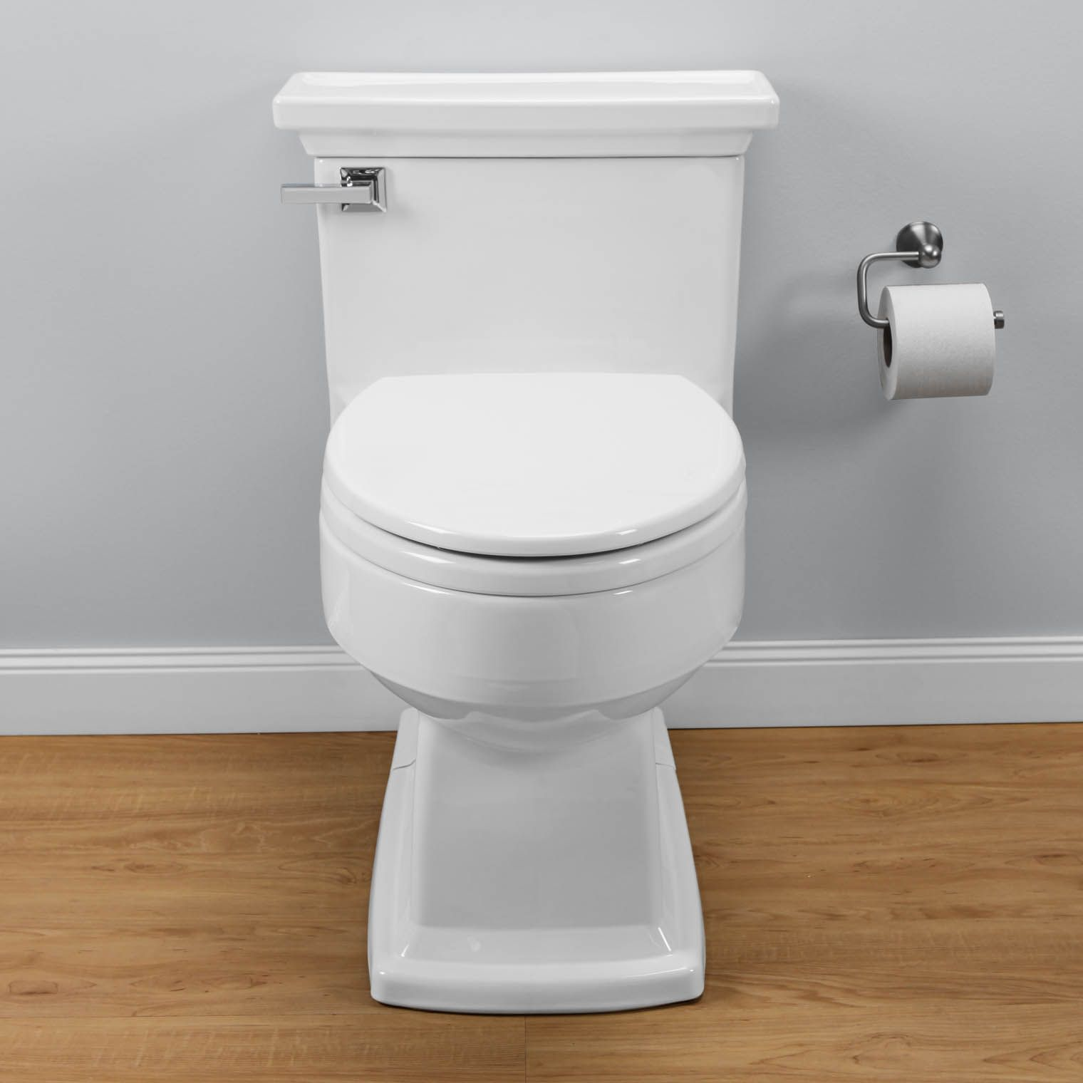 Eco Lloyd Elongated One Piece Toilet With Softclose Seat