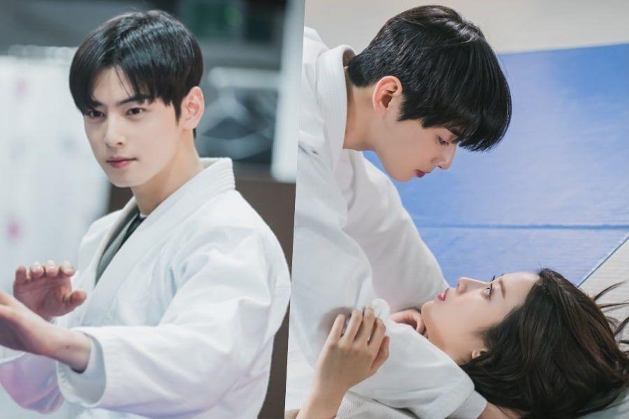 """ASTRO's Cha Eun Woo And Moon Ga Young Share A Romantic Date Practicing Jiu-Jitsu In """"True Beauty"""""""
