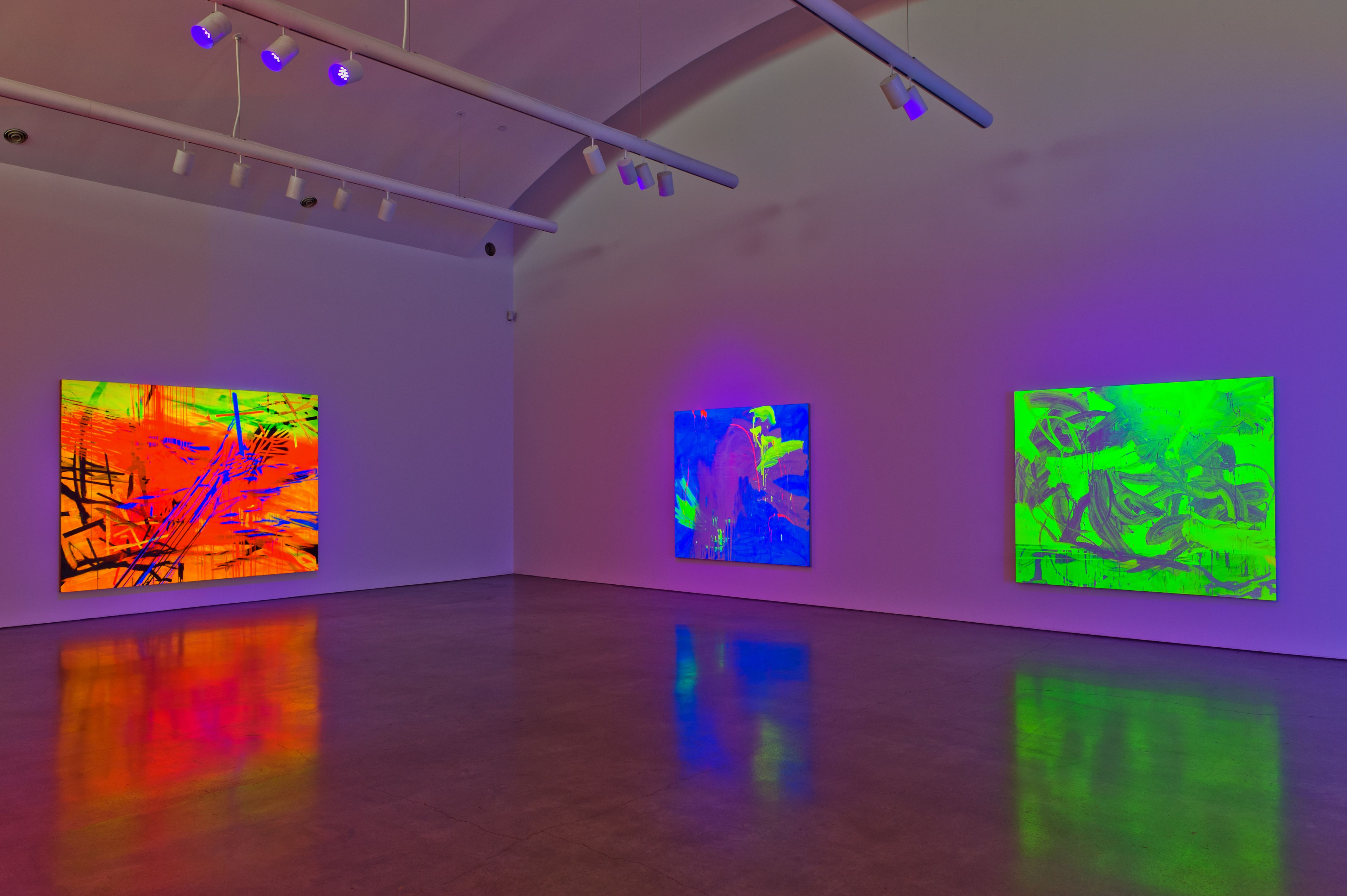 Jacqueline Humphries, Paintings 2005, Installation view of Anti ... for Black Light Installation Art  585eri